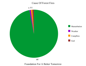Forest Fire Causes - Faith Graph™