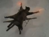 Foreigners Create Dead Cat Kamikazie Drones