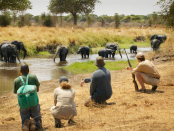B.L.U.F.F. Safford Campus Announces Big Game Safari to Zimbabwe