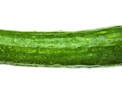 Masturbators Cause Cucumber Recall in California